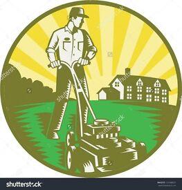 Grass cutting, hedge cutting, tree work.