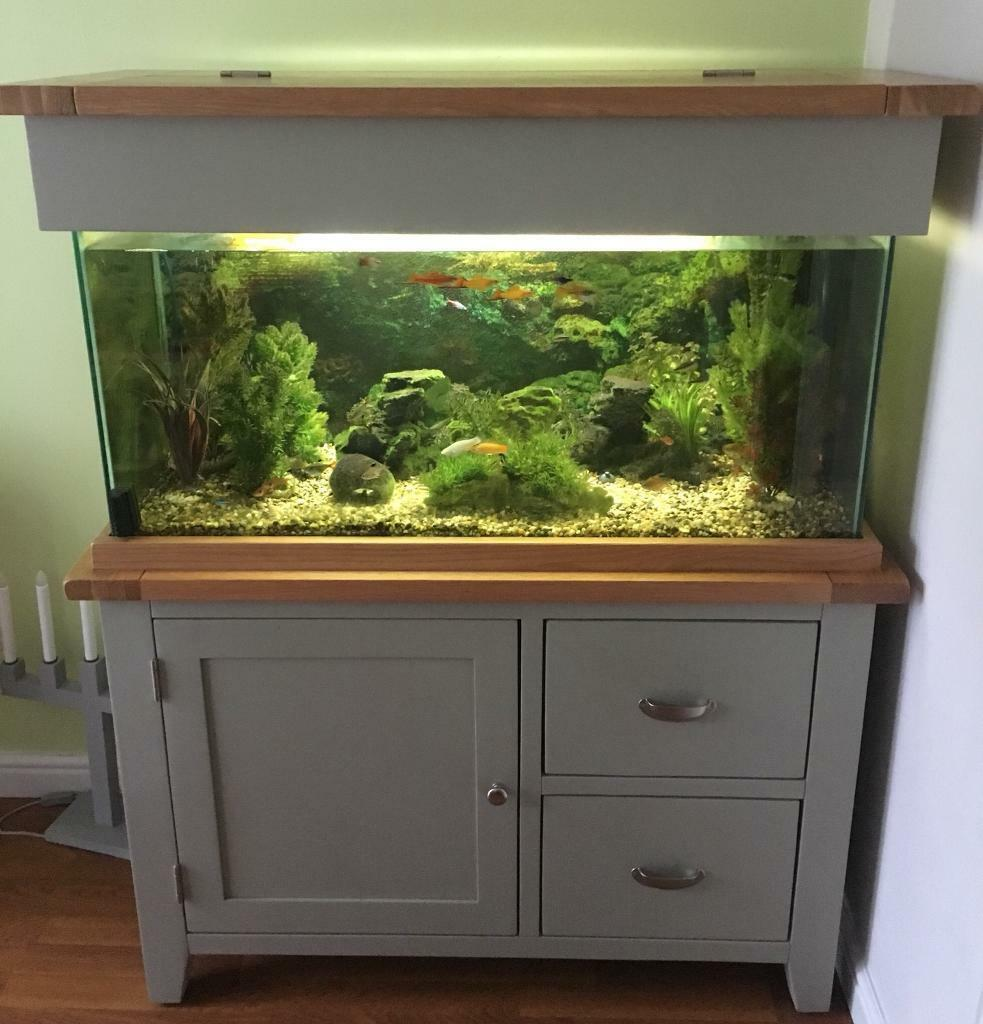 Oak & Grey Aquarium