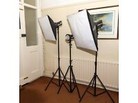 Elinchrome D-Lite studio flash set up.