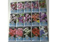 SWEET PEA X 15 packets seed collection