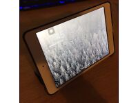 iPad Mini MINT CONDITION