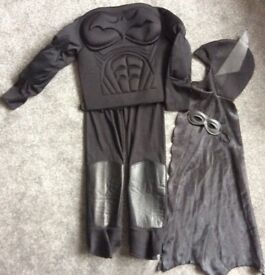 Batman Dressing up 7-11 years