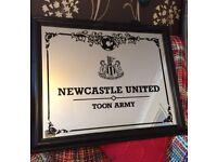 Newcastle united picture mirror