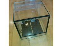 Glass vivarium/terrarium and heat mat