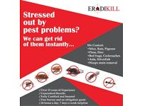 Having problems with Mice, Rats, Bedbugs, Cockroaches. Call Eradikill Pest Control on 07939 152049