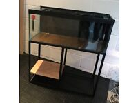 3ft Red Sea tank & stand