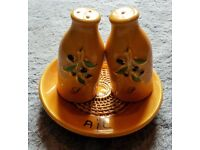 Salt and Pepper Shakers and Garlic Dish Set