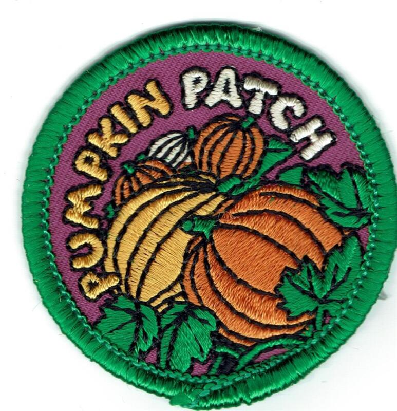Girl Boy Cub PUMPKIN PATCH Day Visit Fun Patches Crests Badges SCOUT GUIDE Purpl