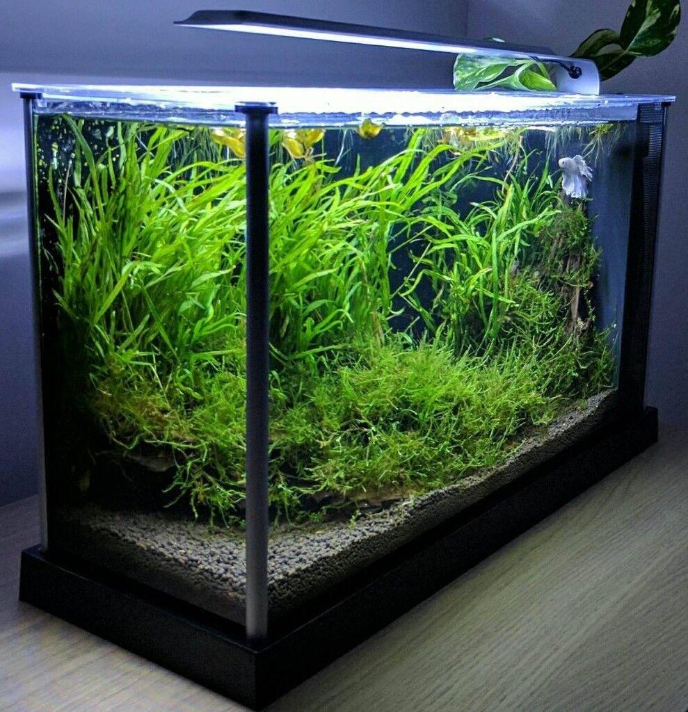 juwel korall 60 tropical aquarium instruction manual