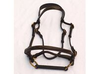 Leather In Hand Show Bridle Pony size with bit - (youngstock) used excellent condition