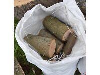 Firewood Ash Tree Logs (Seasoned) large sack