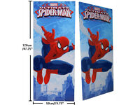 Marvel® Spiderman Spider-Man Extra Large Size Wall Art Canvas Paint Print
