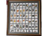 1931 MILITARY HEAD-DRESS Framed Set Of 50 Cigarette Cards