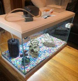 Fish Tank 55L with Accessories