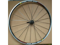MAVIC AKSIUM RACE WHEELSET. shimano. 9/10/11 speed.