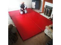 3 Home Gym Workout Mats for Yoga BJJ Grappling etc