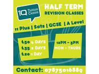 11plus/english/maths/sciences/tuition/tutors