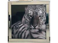 Large Black & White Big Cat Liquid Art Picture Glitter Shimmer Mirror Frame