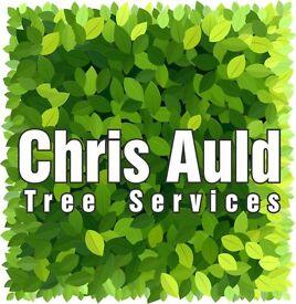 Tree surgeon/team leader (Full time permanent)