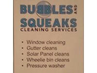 Window and gutter cleaners/clearers. 20 years up a ladder. Hand clean and pole system. 30% off now.