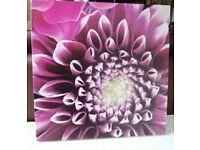2 x Pretty Pink Flower Canvas Prints 50cmx50cm