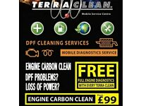 AMAZING BUSINESS OPPORTUNITY - TERRACLEAN