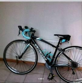 Road Bike Specialized