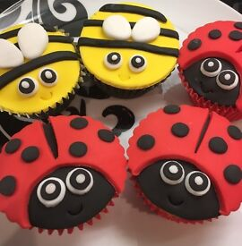 Sooooooooo CUTE!! - 24 Childrens Birthday Party Ladybird & Bee Cupcakes - Boxed & Ready to Take Away