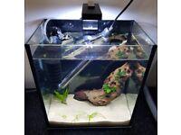 Nano Fish Tank/Aquarium Full Tropical Setup Condition Like New cost 180 - 95 OVNO