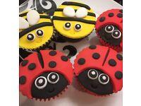 Sooooooooo CUTE!! - 12 Childrens Birthday Party Ladybird & Bee Cupcakes - Boxed & Ready to Take Away