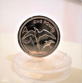 1984 SOOTY TERNS VERY SOUGHT AFTER - ST HELENA & ASCENSION - ONE POUND COIN - BRILLIANT UNCIRCULATED