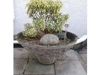 Large plant container