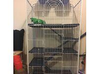 3 Tier large rat ferret degu cage hutch