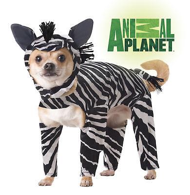 Zebra Dog Costumes Animal Planet Pet Costume