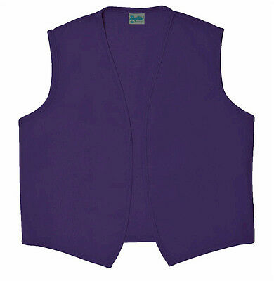 Who Costumes (Daystar 740NP No Pocket Purple Vest for Aladdin or Dr Who Costume ~ Made in)