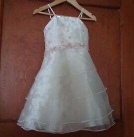 Ladybird Girls Party/ Bridesmaids Dress