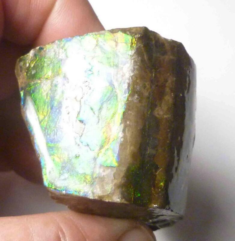 Shiney multi Color AMMOLITE Gemstone Rough 50x38mm Fossil Edge 3 sides!