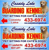 Cassidy Lake Boarding Kennel. Pet Sitting for Cats & Dogs