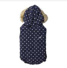 Polka dot coat for a dog!