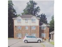 2 bed ground floor for 2/3 bed HOUSE
