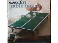 Executive Table Tennis