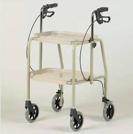 Combination trolley walker