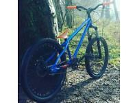 """Mongoose ritual 24"""" custom jump bike"""
