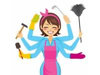Professional domestic cleaner , price from £12