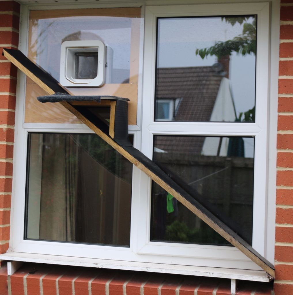 Sureflap Microchip Cat Flap Pet Door And Incredible Double Sided