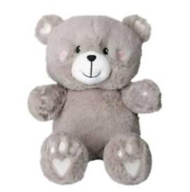 Ava & friends voice recording bear