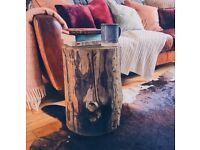 tree stumps seasoned and cleaned ideal for side tables or coffee tables