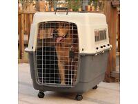 IATA approved aviation dog kennel