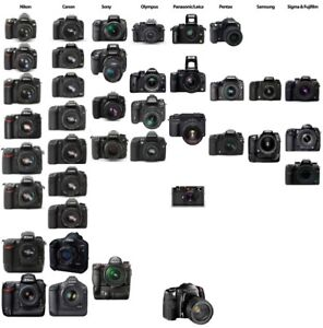 Looking for broken DSLR cameras