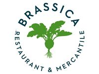 Chefs and Kitchen Assistants required